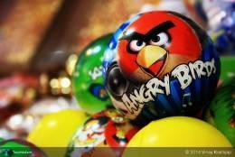 Angry Birds Cerw - Photography | Vinay Kashyap | Touchtalent