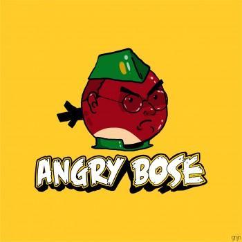 Angry Bose - Design   Gunjan Ashtaputre   Touchtalent