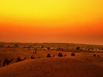 Camel And Sunset! - Photography | Shraddha Bagrodia | Touchtalent