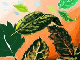 Floating Leaves Done In MS Paint - Painting | Manju Chaudhuri | Touchtalent