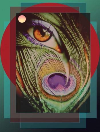 Peacock Eye - Digital Art | Jahnu Das | Touchtalent
