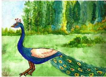 Peacock! - Painting | Keya Srivastava | Touchtalent