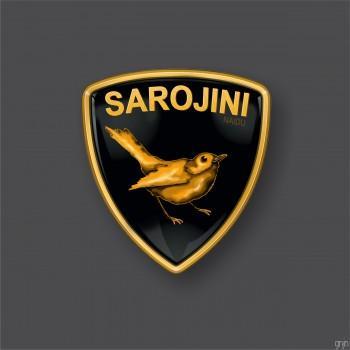 Sarojini Naidu - Design | Gunjan Ashtaputre | Touchtalent