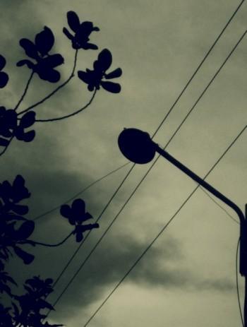 The Dark Lantern - Photography | Samin Farhan | Touchtalent