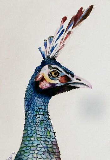 Beauty Queen - Sketching | Dhananjay Pawar | Touchtalent