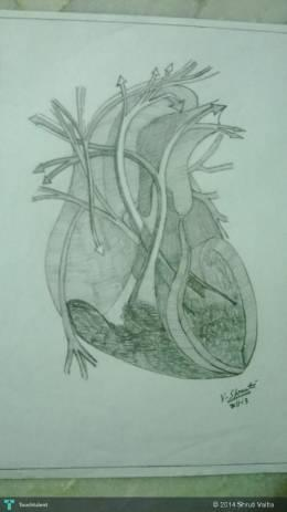 Heart Attack - Sketching | Shruti Vaitla | Touchtalent